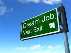 Top 3 Things to Look for In Your Next Job