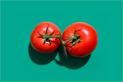 Why Tomatoes Are Critical for Working at Home