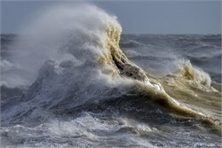 A Tidal Wave of Hiring Begins to Take Shape