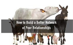 The four kinds of peer connections you need